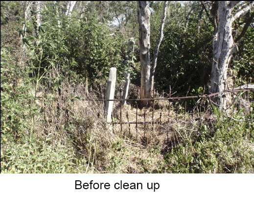 before_clean_up-1a